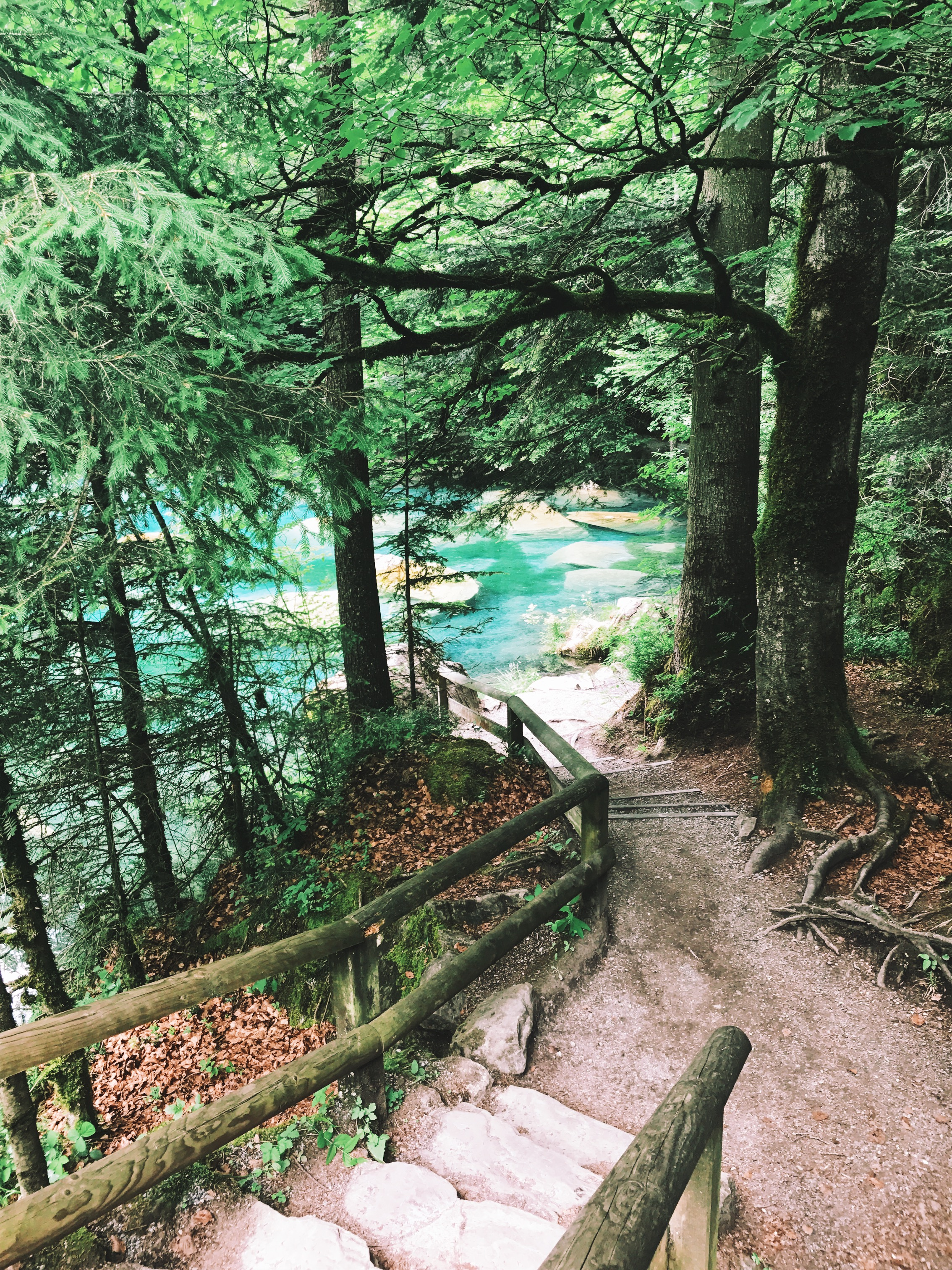 Steps leading to Blausee lake in the Alps, Switzerland